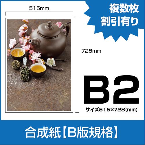 PP_B2
