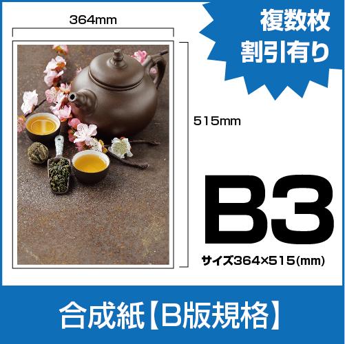 PP_B3