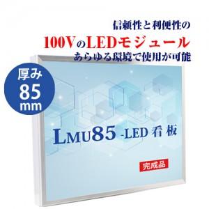 LMU-10001