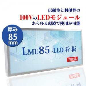 LMU-10002