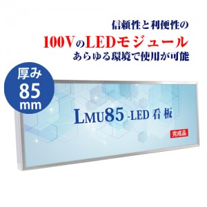 LMU-10005