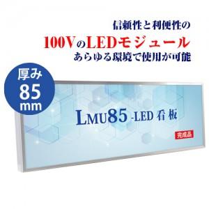 LMU-10006