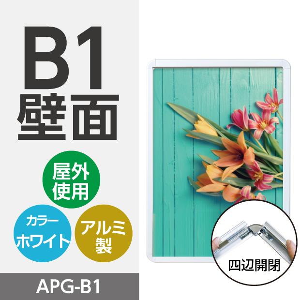 apg-b1